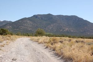 Large acreage in Nevada