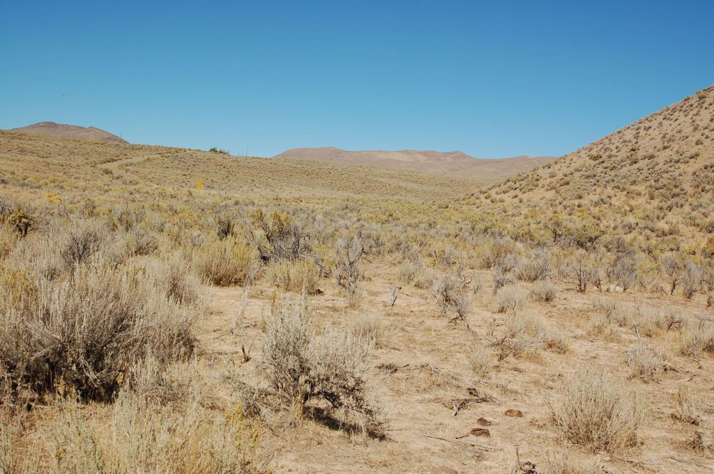 Land in Elko Nevada for Sale