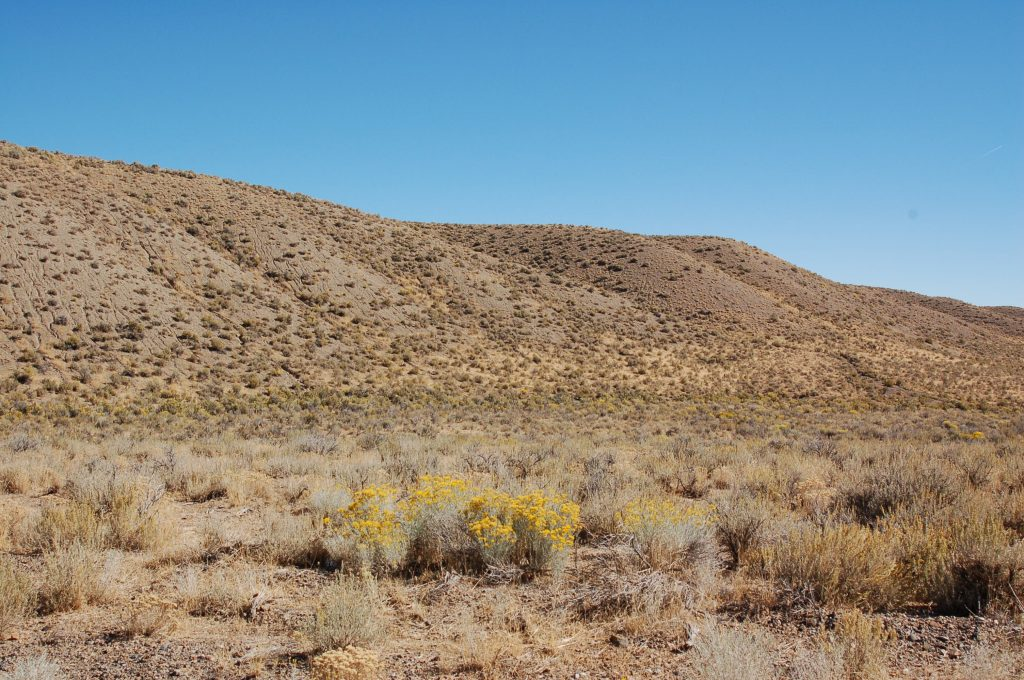 Elko Land for Sale