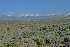 Why We Love Land in Elko Nevada